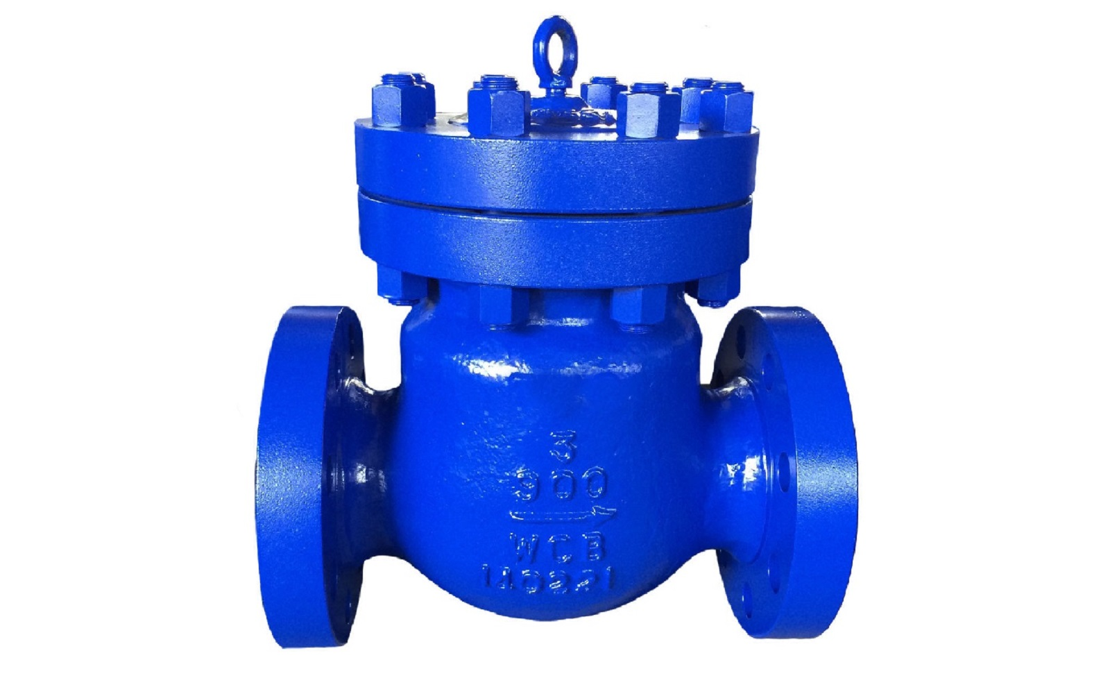 API 594/API 6D Conventional Swing Check Valve