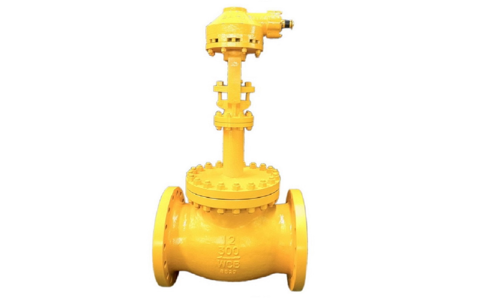 Cast Cryogenic Globe Valve